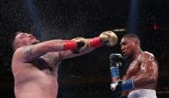 Anthony Joshua vs Andy Ruiz