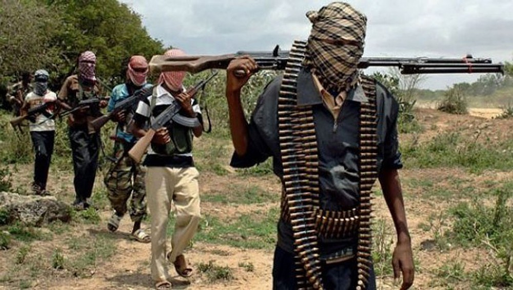 Boko Haram started as youth protests – Gov. Zulum pleads to #EndSARS promoters