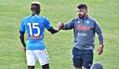 Young lad with head of 40-year old - Gattuso praises Osimhen