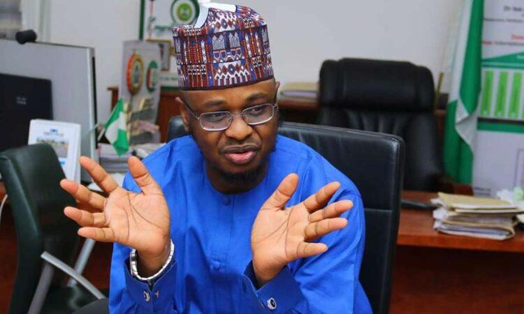 Buhari Praises Pantami's Ministry, Reveals How Government Will Use NIN