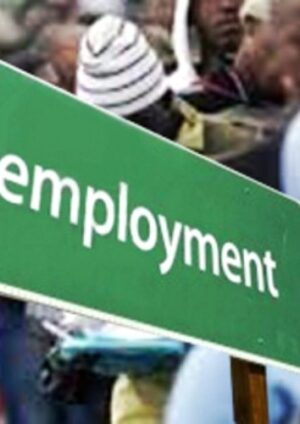 NBS: Nigeria's unemployment rate hits 33.3% — highest ever
