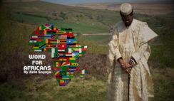 Word for Africans by Akin Soyoye