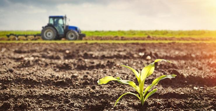 Lagos Agriculture