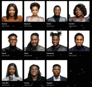 Nigerian Idol 2021 Voting