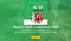Requirements and How to Apply for Nigeria Youth Investment Fund Application