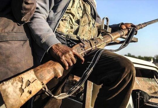 Just In: Suspected bandits attack emir in Katsina, 3 policemen, 6 palace guards killed