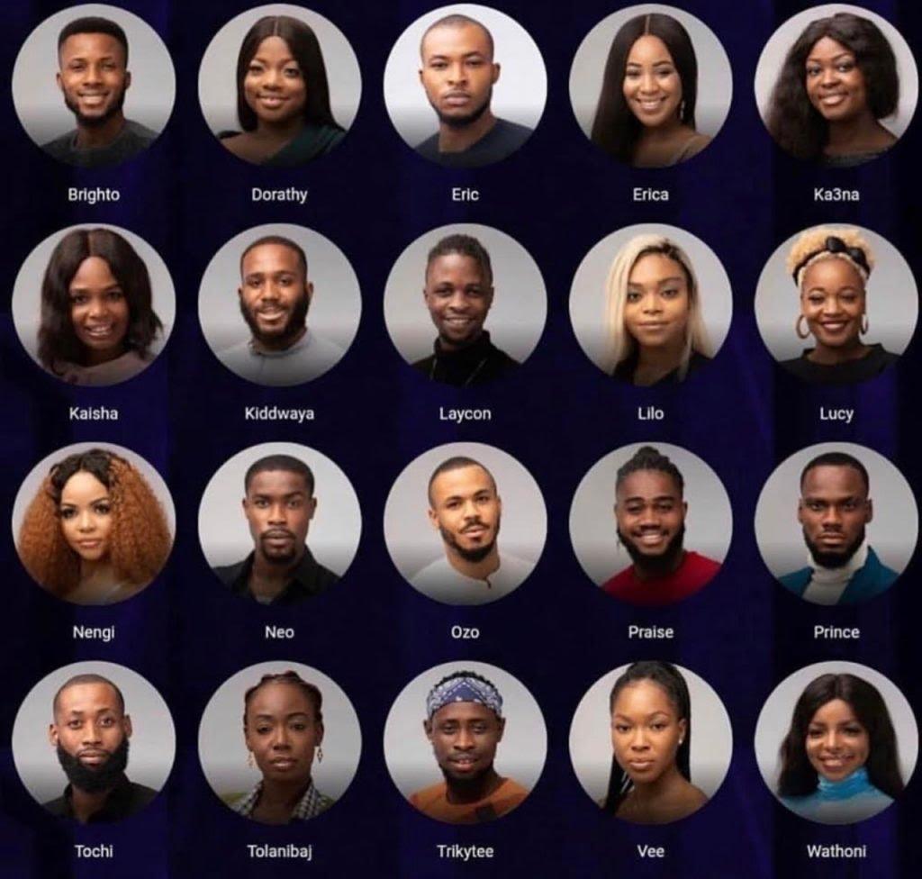 BBNaija 2020 Vote: How to vote for favourite housemates